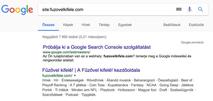 weboldal elemzés: site search