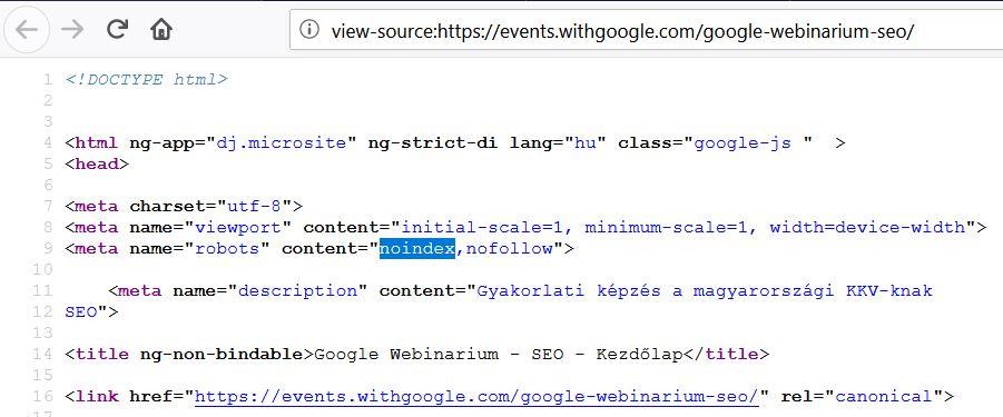 google seo webinar noindex